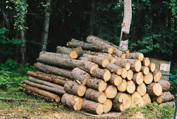 Heating Logs
